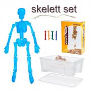 Kinetic Sand Skelett Set Mensch